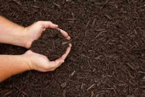 Mulch Giveaway April 28 & 29 @ Old Smoky Hollow building | Little Rock | Arkansas | United States